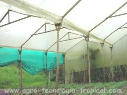 Invernaderos tropicales justificaci n caracteristicas e for Viveros en colombia