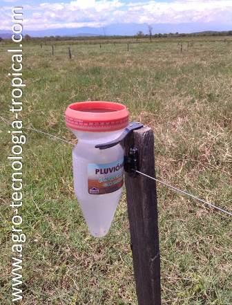 Pluviómetro: instrumento para medir precipitación