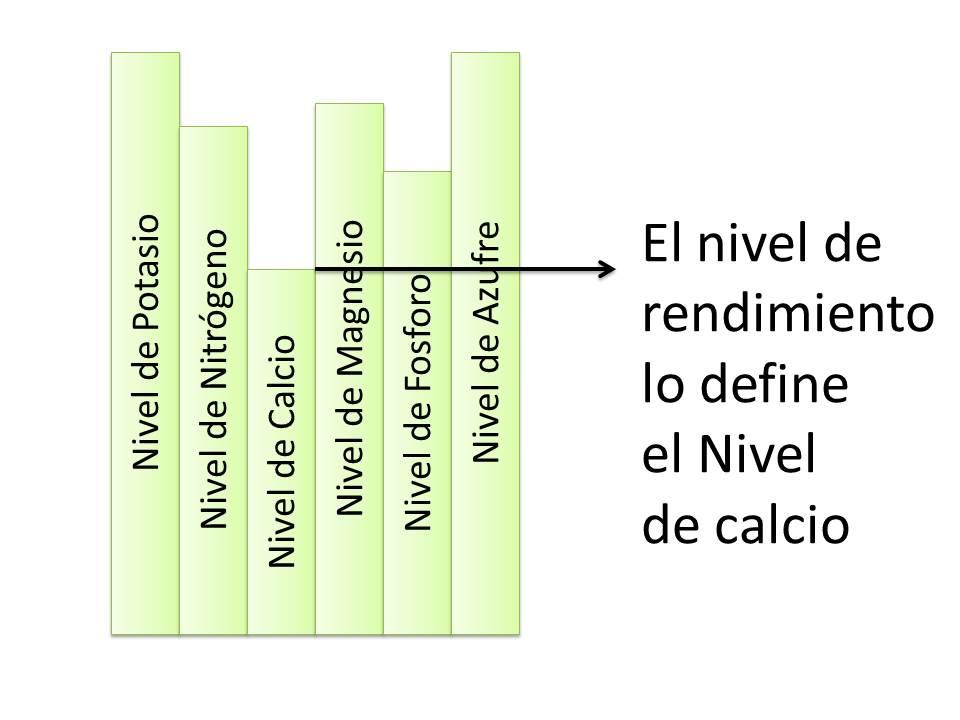 Factor limitante nutricional
